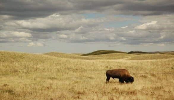 Landschaft in Kanada